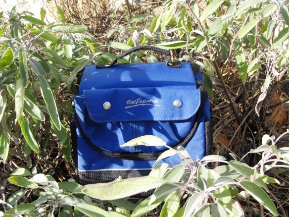 green lunchbox 1