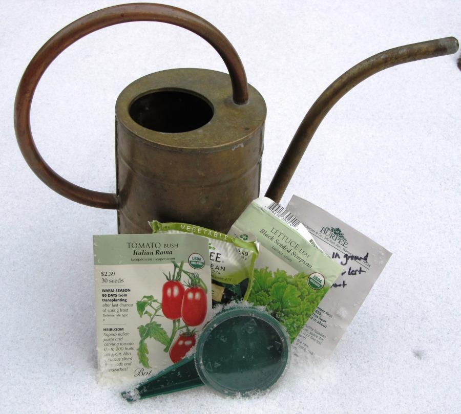winter seeds 5
