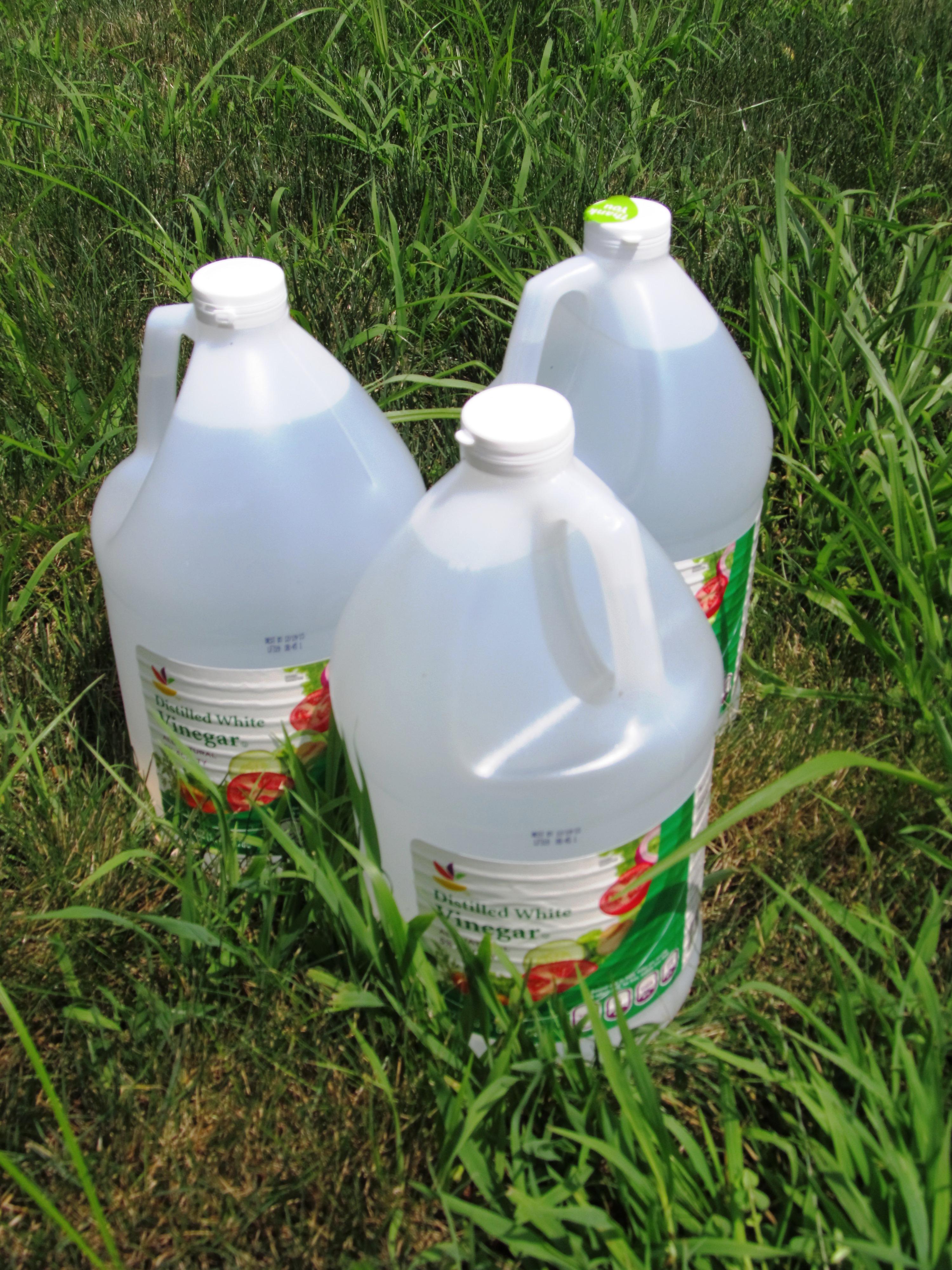 The Tao Of Vinegar Fresh In The Delaware River Valley