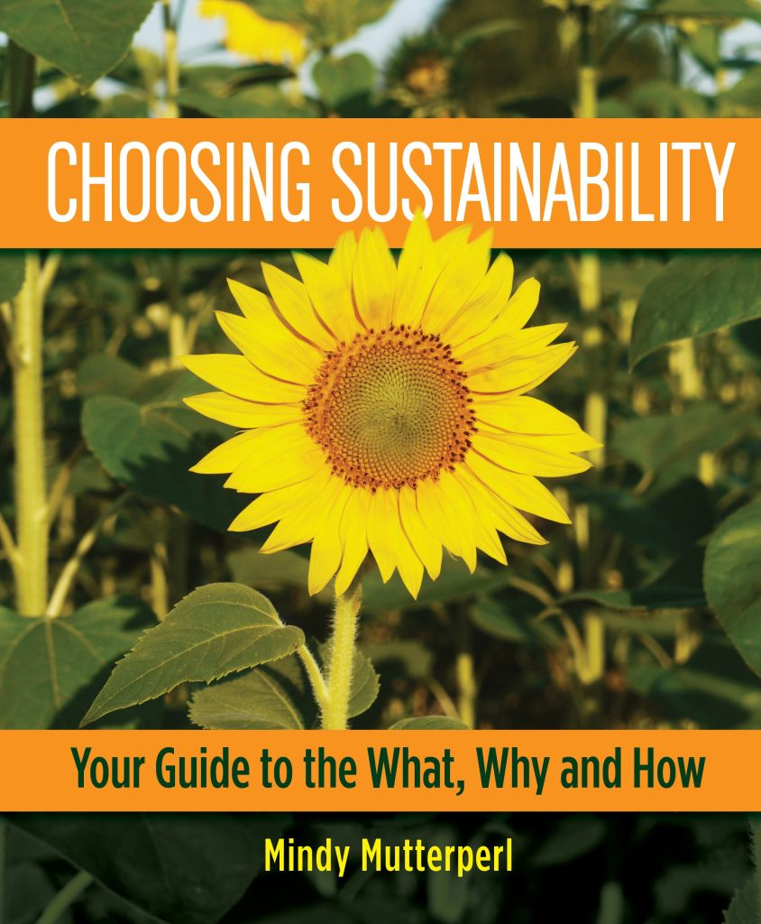 Choosing Sustainability coverfor web